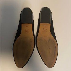 Caslon Shoes - Black suede mules